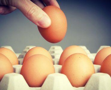 Eieren zijn goede eiwitrijke producten en helpen bij spieropbouw