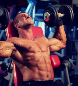 De dumbbell shoulder press richt zich op het trainen van de schouderspieren.